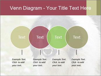 0000078182 PowerPoint Template - Slide 32