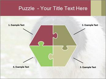 0000078182 PowerPoint Template - Slide 40