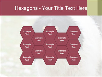 0000078182 PowerPoint Template - Slide 44