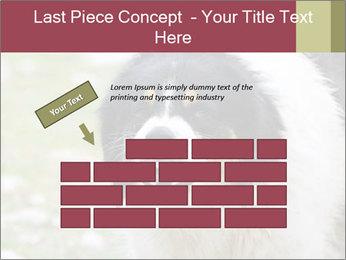 0000078182 PowerPoint Template - Slide 46