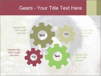 0000078182 PowerPoint Template - Slide 47