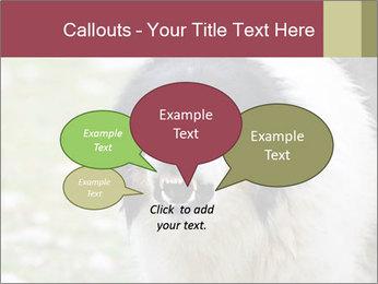0000078182 PowerPoint Template - Slide 73