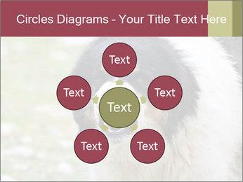 0000078182 PowerPoint Template - Slide 78