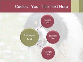 0000078182 PowerPoint Template - Slide 79
