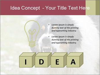 0000078182 PowerPoint Template - Slide 80