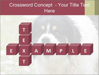 0000078182 PowerPoint Template - Slide 82
