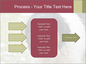 0000078182 PowerPoint Template - Slide 85
