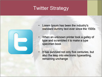 0000078182 PowerPoint Template - Slide 9