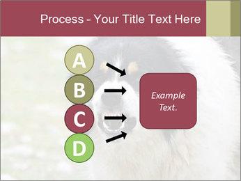 0000078182 PowerPoint Template - Slide 94