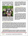 0000078182 Word Template - Page 4