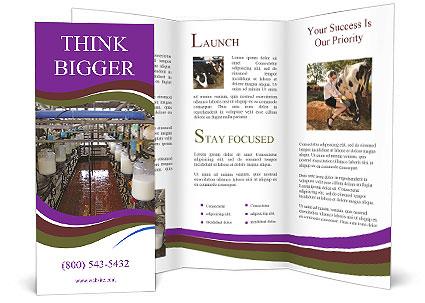 0000078188 Brochure Templates