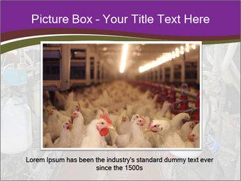 0000078188 PowerPoint Templates - Slide 15