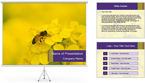 0000078193 PowerPoint Template