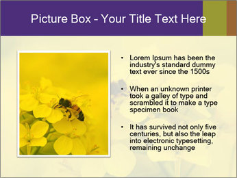 0000078193 PowerPoint Template - Slide 13