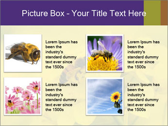 0000078193 PowerPoint Template - Slide 14