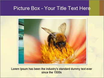 0000078193 PowerPoint Template - Slide 15