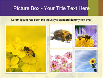 0000078193 PowerPoint Template - Slide 19