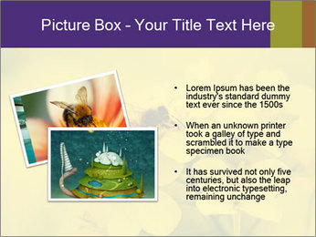 0000078193 PowerPoint Template - Slide 20