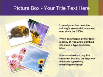 0000078193 PowerPoint Template - Slide 23