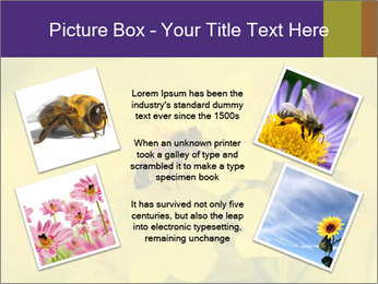 0000078193 PowerPoint Template - Slide 24