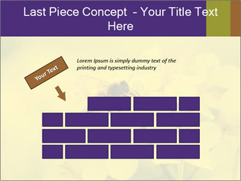 0000078193 PowerPoint Template - Slide 46