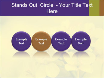 0000078193 PowerPoint Template - Slide 76