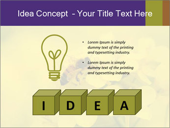 0000078193 PowerPoint Template - Slide 80