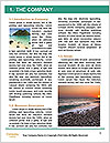 0000078198 Word Template - Page 3