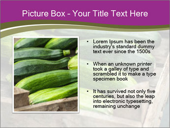 0000078200 PowerPoint Template - Slide 13
