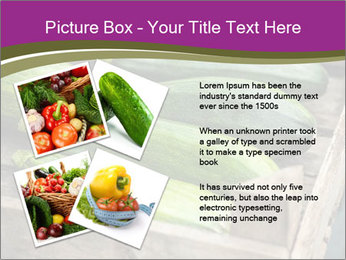 0000078200 PowerPoint Template - Slide 23