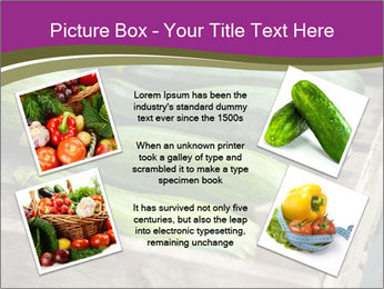 0000078200 PowerPoint Template - Slide 24