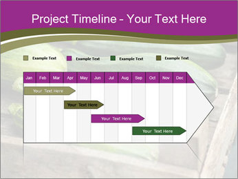 0000078200 PowerPoint Template - Slide 25