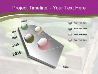 0000078200 PowerPoint Template - Slide 26