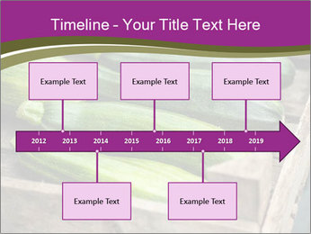 0000078200 PowerPoint Template - Slide 28