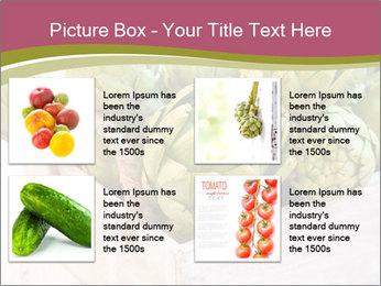 0000078208 PowerPoint Template - Slide 14