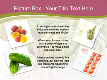 0000078208 PowerPoint Template - Slide 24