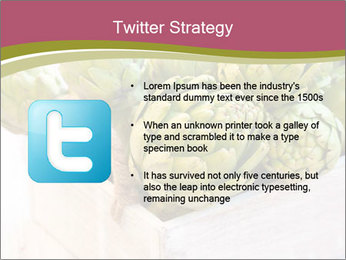 0000078208 PowerPoint Template - Slide 9