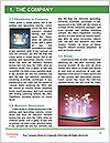 0000078219 Word Template - Page 3