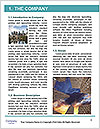 0000078233 Word Template - Page 3