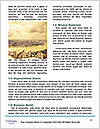 0000078233 Word Template - Page 4