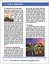 0000078234 Word Template - Page 3