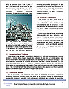 0000078234 Word Template - Page 4
