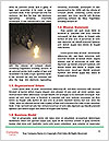 0000078248 Word Template - Page 4
