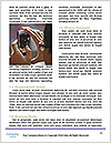 0000078249 Word Templates - Page 4
