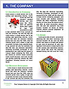 0000078261 Word Template - Page 3