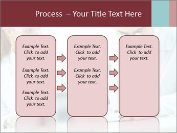 0000078269 PowerPoint Templates - Slide 86