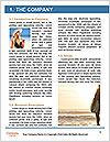 0000078280 Word Template - Page 3