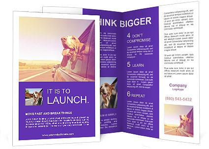 0000078281 Brochure Template