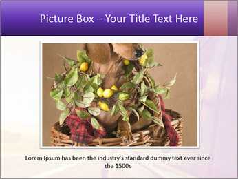 0000078281 PowerPoint Template - Slide 15