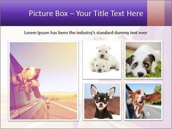 0000078281 PowerPoint Template - Slide 19